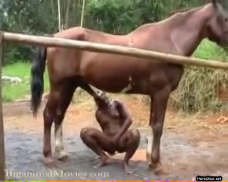 slut has fun with a huge horse dick